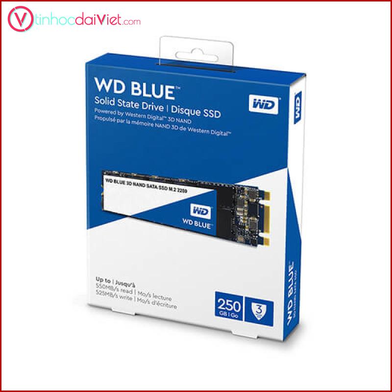 SSD WD Blue 250GB M.2 SATA 1
